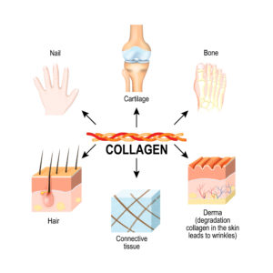 Collagen benefits ExtraCell